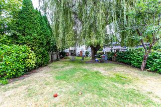 Photo 13: 4861 PRINCE EDWARD Street in Vancouver: Main House for sale (Vancouver East)  : MLS®# R2105436