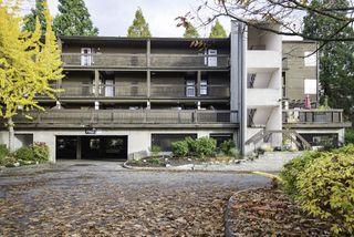 """Photo 1: 201 7851 NO 1 Road in Richmond: Quilchena RI Condo for sale in """"BEACON COVE"""" : MLS®# R2119334"""