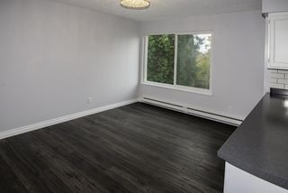 """Photo 5: 201 7851 NO 1 Road in Richmond: Quilchena RI Condo for sale in """"BEACON COVE"""" : MLS®# R2119334"""