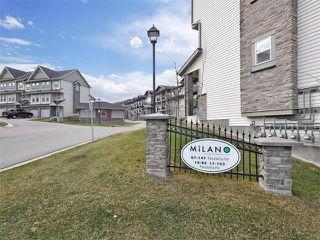 Photo 29: 203 48 PANATELLA Road NW in Calgary: Panorama Hills Condo for sale : MLS®# C4111419