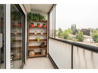 Photo 7: 203 2425 SHAUGHNESSY Street in Port Coquitlam: Central Pt Coquitlam Condo for sale : MLS®# R2195170
