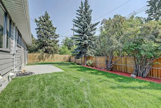 Photo 43: 3719 58 Avenue SW in Calgary: Lakeview House for sale : MLS®# C4165322