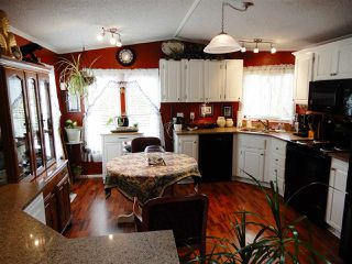 "Main Photo: 20 5575 MASON Road in Sechelt: Sechelt District House for sale in ""MASON MOBILE PARK"" (Sunshine Coast)  : MLS®# R2259547"