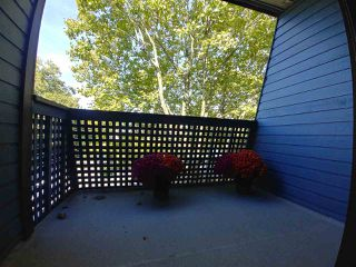 "Photo 10: 205 5906 176A Street in Surrey: Cloverdale BC Condo for sale in ""Wyndham Estates"" (Cloverdale)  : MLS®# R2282384"