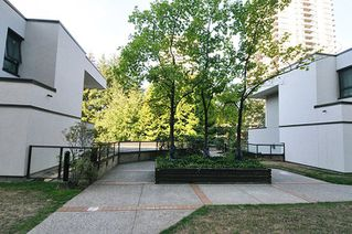 """Photo 13: 35 9521 CARDSTON Court in Burnaby: Government Road Condo for sale in """"CONCORDE PLACE"""" (Burnaby North)  : MLS®# R2303100"""