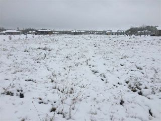 Main Photo: 8, 53521 RR 272: Rural Parkland County Rural Land/Vacant Lot for sale : MLS®# E4130412