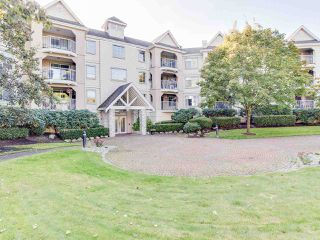 """Main Photo: 315 20894 57 Avenue in Langley: Langley City Condo for sale in """"Bayberry Lane"""" : MLS®# R2310611"""