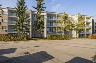 Main Photo: 336 4404 122 Street in Edmonton: Zone 16 Condo for sale : MLS®# E4131501
