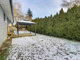 Photo 19: 11940 249 Street in Maple Ridge: Websters Corners House for sale : MLS®# R2338978