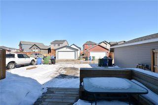Photo 31: 56 CRANFORD Park SE in Calgary: Cranston Detached for sale : MLS®# C4235252
