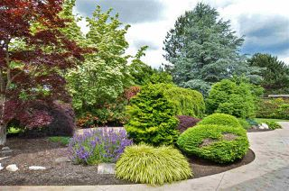 "Photo 19: 12939 22A Avenue in Surrey: Elgin Chantrell House for sale in ""OCEAN PARK TERRACE"" (South Surrey White Rock)  : MLS®# R2378968"