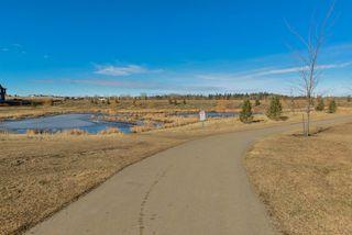 Photo 28:  in Edmonton: Zone 56 House for sale : MLS®# E4163712