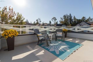 Photo 25: 3670 Coleman Pl in VICTORIA: Co Latoria Single Family Detached for sale (Colwood)  : MLS®# 824343