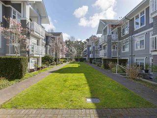 Photo 3: 302 1706 56 Street in Delta: Beach Grove Condo for sale (Tsawwassen)  : MLS®# R2429076