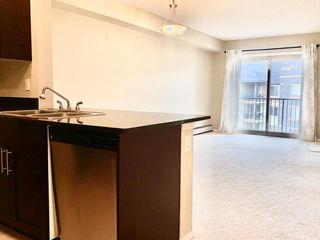 Photo 14: 403 12035 22 Avenue in Edmonton: Zone 55 Condo for sale : MLS®# E4196346