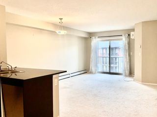 Photo 13: 403 12035 22 Avenue in Edmonton: Zone 55 Condo for sale : MLS®# E4196346