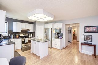 Photo 11: 28 DOUGLAS WOODS Grove SE in Calgary: Douglasdale/Glen Detached for sale : MLS®# A1010997