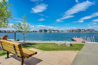 Photo 49: 113 AUTUMN Gardens SE in Calgary: Auburn Bay Detached for sale : MLS®# A1015959