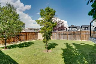 Photo 45: 113 AUTUMN Gardens SE in Calgary: Auburn Bay Detached for sale : MLS®# A1015959