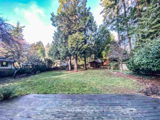 Photo 14: 12723 16 AVENUE in Surrey: Crescent Bch Ocean Pk. House for sale (South Surrey White Rock)  : MLS®# R2519619