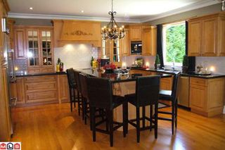 Photo 2: 2633 138A ST in Surrey: Home for sale (Elgin Chantrell)  : MLS®# F1017091
