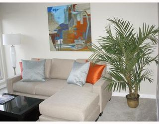 Photo 2: 2429 1ST Ave in Vancouver West: Kitsilano Home for sale ()  : MLS®# V765902