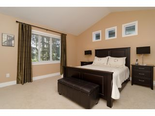 "Photo 18: 15040 58A Avenue in Surrey: Sullivan Station House for sale in ""Sullivan Station"" : MLS®# F1434106"