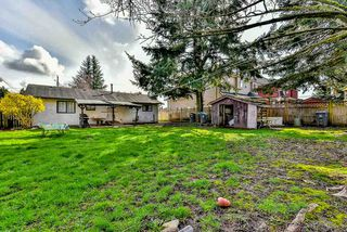 Photo 20: 12521 92 Avenue in Surrey: Queen Mary Park Surrey House for sale : MLS®# R2151336