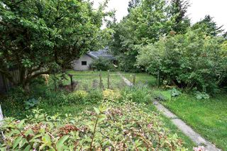 Photo 10: 4026 W 38TH Avenue in Vancouver: Dunbar House for sale (Vancouver West)  : MLS®# R2202469