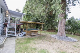 Photo 23: 21107 117th Ave in Maple Ridge: House for sale : MLS®# R2209270