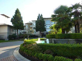 "Photo 20: 115 8180 JONES Road in Richmond: Brighouse South Condo for sale in ""LAGUNA"" : MLS®# R2218479"