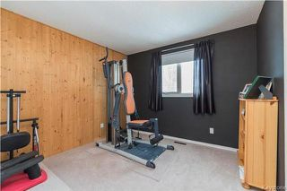 Photo 10: 239 Tufnell Drive in Winnipeg: River Park South Residential for sale (2F)  : MLS®# 1729741