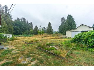 Photo 17: 27456 43 Avenue in Langley: Salmon River House for sale : MLS®# R2298004