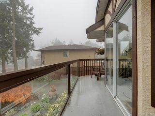 Photo 21: 2800 Austin Ave in VICTORIA: SW Gorge Single Family Detached for sale (Saanich West)  : MLS®# 800400