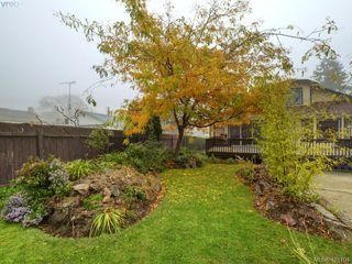 Photo 41: 2800 Austin Ave in VICTORIA: SW Gorge Single Family Detached for sale (Saanich West)  : MLS®# 800400