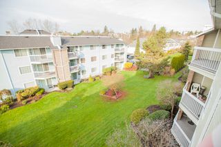 "Photo 14: 311 22514 116 Avenue in Maple Ridge: East Central Condo for sale in ""FRASER COURT"" : MLS®# R2322303"