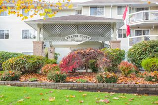 "Photo 2: 311 22514 116 Avenue in Maple Ridge: East Central Condo for sale in ""FRASER COURT"" : MLS®# R2322303"