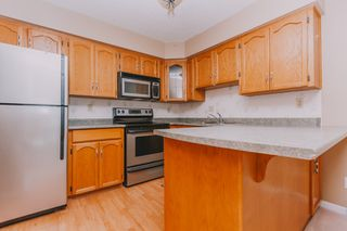 "Photo 4: 311 22514 116 Avenue in Maple Ridge: East Central Condo for sale in ""FRASER COURT"" : MLS®# R2322303"
