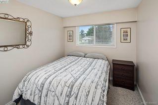 Photo 9: 1623 Dougall Avenue in VICTORIA: SE Gordon Head Single Family Detached for sale (Saanich East)  : MLS®# 404462