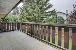 Photo 14: 3708 34A Avenue in Edmonton: Zone 29 House Half Duplex for sale : MLS®# E4139954