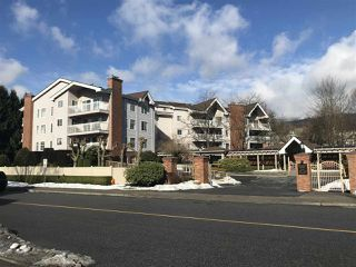 "Main Photo: 404 2963 BURLINGTON Drive in Coquitlam: North Coquitlam Condo for sale in ""BURLINGTON ESTATES"" : MLS®# R2342070"
