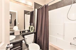 Photo 25: 33 Newgate Way: St. Albert House for sale : MLS®# E4146209