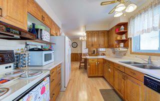 Photo 9: 34 Rowallan Drive in Toronto: West Hill House (Bungalow) for sale (Toronto E10)  : MLS®# E4382523