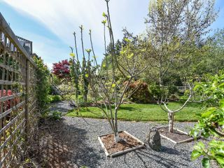 Photo 57: 1476 Jackson Dr in COMOX: CV Comox Peninsula House for sale (Comox Valley)  : MLS®# 810423