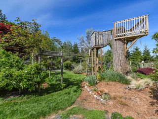 Photo 52: 1476 Jackson Dr in COMOX: CV Comox Peninsula House for sale (Comox Valley)  : MLS®# 810423