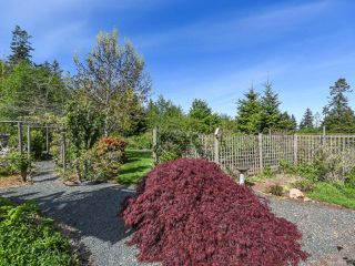 Photo 54: 1476 Jackson Dr in COMOX: CV Comox Peninsula House for sale (Comox Valley)  : MLS®# 810423