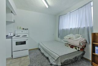 Photo 23: 8520 107 Street in Edmonton: Zone 15 House for sale : MLS®# E4151568