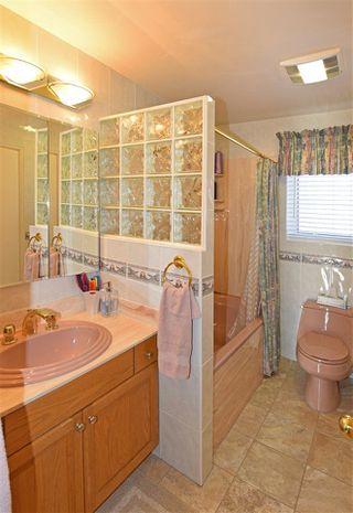 Photo 12: 7110 96A Avenue in Edmonton: Zone 18 House for sale : MLS®# E4153822