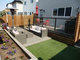 Photo 25: 22015 97 Avenue NW in Edmonton: Zone 58 House for sale : MLS®# E4159835
