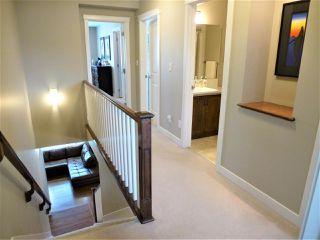 Photo 16: 22015 97 Avenue NW in Edmonton: Zone 58 House for sale : MLS®# E4159835